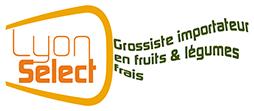 logo lyon select